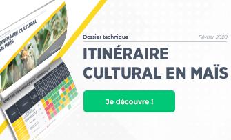 Dossier technique itineraire culturale mais