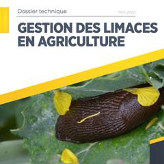Gestion des limaces en agriculture