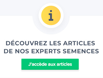 articles blog semences
